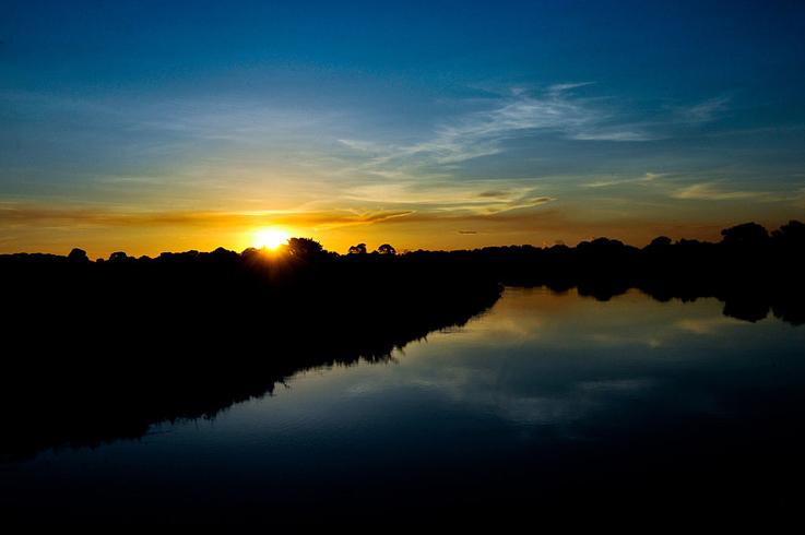 Grupo da USP levanta volume de dados inédito sobre o Pantanal