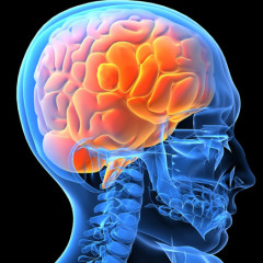 Estresse precoce pode agravar depressão na vida adulta, indica pesquisa