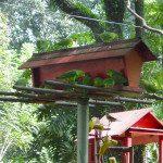 Viveiros construídos para as maritacas, onde também outros pássaros se alimentam. Foto: aloimage