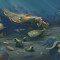 """Período Cambriano: """"O oceano ao longo do tempo geológico"""""""