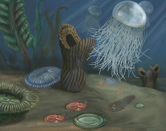 """Período Proterozóico: """"O oceano ao longo do tempo geológico"""""""