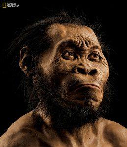 Reconstituição de como teria sido a face do Homo naledi. Foto: National Geographic / reprodução