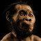 Homo naledi ainda causa surpresa uma semana depois de ser achado