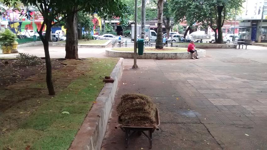 Descanso no centro da praça, onde a paz reinante preguiçosamente dava lugar à movimentação urbana. Foto: aloimage