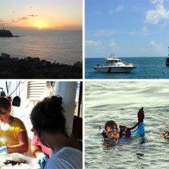 Expedição avalia vida marinha em Abrolhos