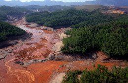 Ibama e ICMBio atuam desde o início da tragédia provocada pela Samarco