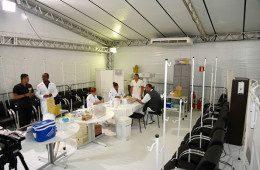 Tendas da Prefeitura na zona Leste: dengue e mosquito na mira