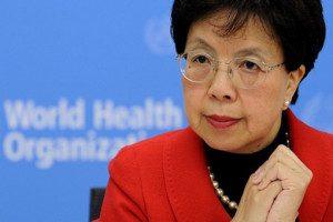 """""""As condições climáticas deste período do ano podem aumentar ainda mais a população do mosquito em muitas áreas"""", comentou a diretora-geral da OMS, Margaret Chan (foto: Universidade de Princeton)"""