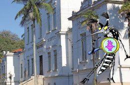 Vacina contra a dengue pode ser adaptada para o Zika, afirma diretor do Butantan