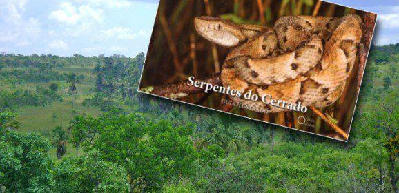 Guia ilustrado apresenta todas as serpentes identificadas no Cerrado brasileiro