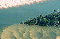 Hidrelétricas na Amazônia: um mau negócio para o Brasil e para o mundo, vídeos