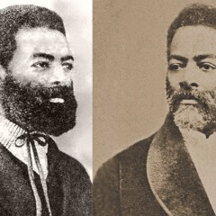Quem foi Luiz Gama?