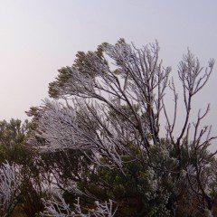 Inverno começou oficialmente às 19h34 do dia 20 de junho, frio chegou antes