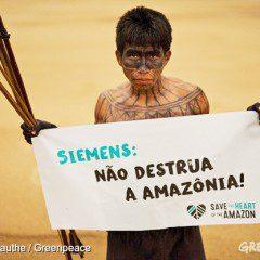 São Luiz do Tapajós: uma tragédia para a biodiversidade