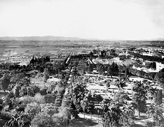 Vista de São Paulo registrada da torre da estação da Luz, 1913.  Em primeiro plano, o Jardim da Luz. Foto: Acervo Fundação Energia e Saneamento