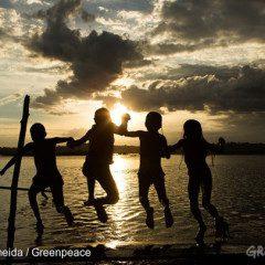 Hidrelétrica no Tapajós está cancelada, vídeo