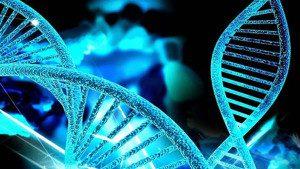 Patologias também podem ter origem genética. Imagem: divulgação