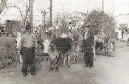 """""""A história contada por quem viveu"""" – Carro de boi nos Altos do Tatuapé"""