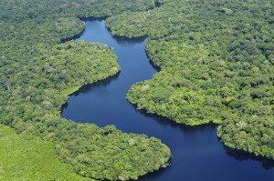 Em reunião realizada em Manaus, pesquisadores vinculados ao GoAmazon e ao LBA apresentaram resultados dos projetos conduzidos nos últimos anos e debateram prioridades para o período entre 2017 e 2021. Foto:Neil Palmer (CIAT)/Wikimedia Commons