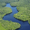 Cientistas fazem balanço de pesquisas sobre a Amazônia