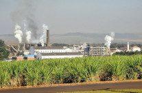 Proálcool: uma das maiores realizações do Brasil baseadas em ciência e tecnologia, vídeo