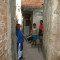 Pesquisadores do Brasil e EUA avaliam efeitos do estresse tóxico em crianças