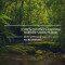Desmatamento dispara na Amazônia, vídeo