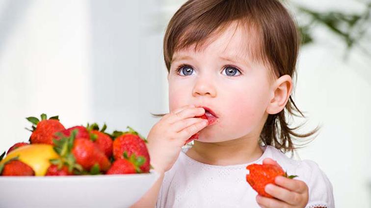 Alimentação saudável é sinônimo de um desenvolvimento bem sucedido para os pequenos. Foto: divulgação / SPSP