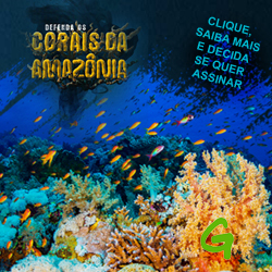 gp corais amaz
