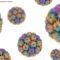 Saúde do homem: HPV e câncer masculino