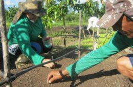 Banco Mundial financia projeto de apoio a agricultores familiares na Paraíba
