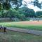 Prefeitura projeta parque no Campo de Marte e ignora centro esportivo no Tatuapé
