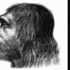 HPV infecta humanos há mais de 500 mil anos
