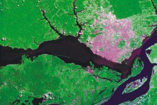 Desmatamento na Amazônia está prestes a atingir limite irreversível