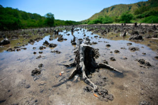 UNESCO lança relatório mundial sobre desenvolvimento dos recursos hídricos, vídeo