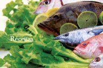 Saiba como escolher, armazenar e preparar adequadamente o seu pescado, download