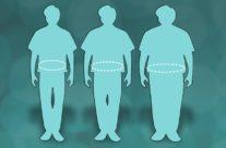 Estudo feito na Unicamp permite traçar o roteiro da obesidade