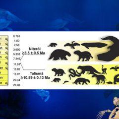 Animais gigantes viviam em megapantanal na Amazônia