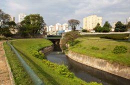 Símbolo da Independência do Brasil, córrego Ipiranga poderá ser despoluído