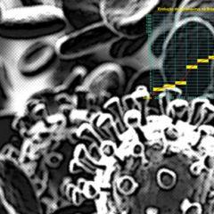 Casos de coronavírus dobraram em dois dias no Brasil