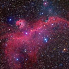 Estudo explica como se formou a nebulosa da Gaivota