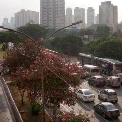 Segunda-feira haverá bloqueio na Radial Leste, diz Prefeitura