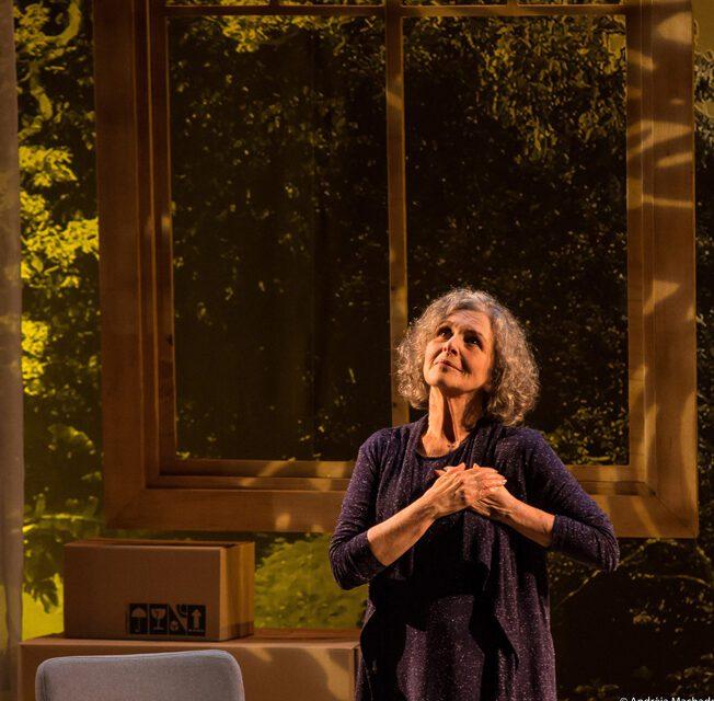 Alma Despejada com Irene Ravache temporada online pelo Teatro WeDo! com 24 horas de acesso