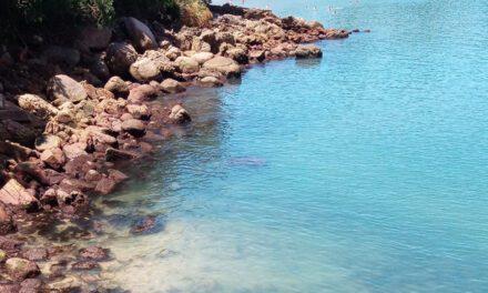 Passeio a Ubatuba, encontro com mar e sol